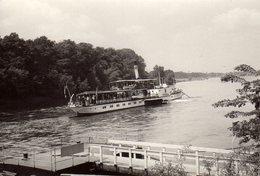 Photo Originale Bateau Fluvial - Navire Vapeur Le PIRNA En Pleine Navigation Chargé De Touristes - Boats