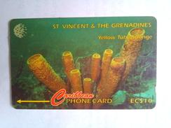 St Vincent 142CSVB Yellow Tube Sponge $10 - St. Vincent & The Grenadines
