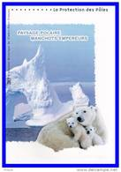 """DPO 2009 (4 Pages) N° 21 09 534 """" PAYSAGE POLAIRE / MANCHOTS / OURS """" N° YT 4350 51. - Polarmarken"""