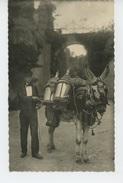 ESPAGNE - GRANADA - Aguador Típico ( âne ) - Granada