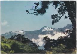 Pico Bolivar, The Bolivar Peak, Los Andes, Venezuela, 1979 Used Postcard [20539] - Venezuela