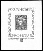 1502a: Ein Mir Unbekannter FL- Sonderdruck (Essay ??) Vaduz 1934 - Neufs