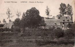 LOUPIAC  ( 15 )  Domaine De Peyrebrune . - Autres Communes