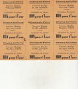 BON Pour 1 Tour (invitation De Faveur) - Nouveau Manège Au Champ De Foire - Tickets D'entrée