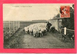 28 .   LA    BEAUCE  ,Le  Départ  Aux  Champs  . - Centre-Val De Loire