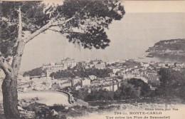 Monaco Monte Carlo Vue Entre Les Pins De Beausoleil - Monaco
