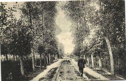 La Panne Route De Bugnoek Personnage Recto Verso Beau Timbre 10c Cachet - De Panne