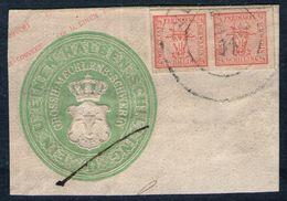 Sulze 25/11 Auf 2/4 Shilling Rot - Meckl. Schwerin Nr. 1 Als Zufr. Auf GAA - Kabinett - Mecklenburg-Schwerin