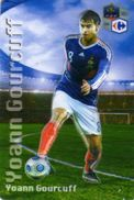 Magnet Magnets Football Carrefour Equipe France En Relief Yoann Gourcuff - Sports