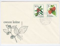 1977 POLAND FDC Stamps FRUIT RASPBERRY Etc Cover - Fruits