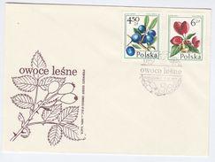 1977 POLAND FDC Stamps FRUIT Wild ROSE (Dog Rose)  Medicinal Plant  Etc Cover Health Medicine Roses - FDC
