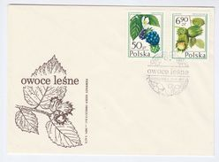1977 POLAND FDC Stamps FRUIT  DEWBERRY Etc Cover - Fruits