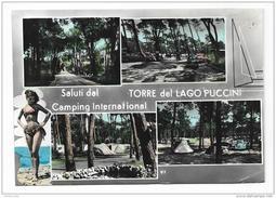 SALUTI DAL CAMPING INTERNAZ. TORRE DEL LAGO PUCCINI   VIAGGIATA FG - Viareggio