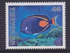 Micronesia 1996 Fish / Achilles Tang 1v ** Mnh (36898B) - Micronesië
