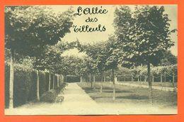 """CPA 88 Bazoilles Et Ménil """" Maison Notre Dame Du Bon Conseil - L'allée Des Tilleuls """" Editions Delboy - LJCP 46 - Autres Communes"""