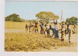 Afrique,africa,COTE D'IVOIRE,ex COLONIE FRANCAISE,ABIDJAN,CARTE DOUBLE,TRAVAIL DE LA TERRE,PAYSAN SOUS LE SOLEIL - Côte-d'Ivoire
