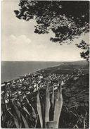 X30 Grottammare (Ascoli Piceno) - Panorama / Viaggiata 1957 - Italia