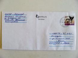 Cover From Belarus 2017 Registered Animal Dog Chien - Belarus