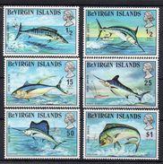 ILES VIERGES BRITANNIQUES - BRITISH VIRGIN ISLANDS - GAME FISH - PECHE SPORTIVE - 1972 - POISSONS - FISH - - Iles Vièrges Britanniques