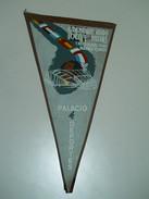 Souvenir * Campeonato Del Mundo Hockey Sobre Patines * Madrid * España * 1960 * Was Glued On Corners - Apparel, Souvenirs & Other