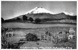 "06635 ""ECUADOR - EL COTOPAXI M. 6010 VULCANO - 55 KM S. DE QUITO S. AMX - "" ANIMATA, MUCCHE. CART  SPED 1966 - Ecuador"