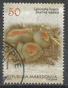 Macedonia 2013. Scott #639c (U) Caloscypha Fulgens, Insect - Macédoine