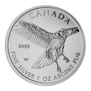 Canada, Red Tailed Hawk 1 Oz 2015 Silver 999 Pure - 1 Oncia Argento Puro Bullion - Canada