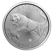 Canada, Cougar 1 Oz 2016 Silver 999 Pure - 1 Oncia Argento Puro Bullion Predators Series - Canada