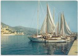 MONTE-CARLO, Le Port, 1960s Unused Postcard [20541] - Monte-Carlo