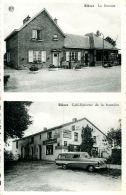 N°56160 -cpsm Rièzes -la Douane -café épicerie De La Frontière- - Belgique