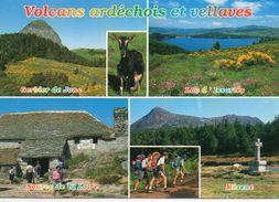 Chèvres Animaux Chevreau Cabris Bouc Chèvre Belle Multi-vues Animée Volcans Ardéchois Et Vellaves - Animals