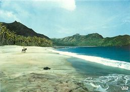 PIE 17-E-7905 :  ILES MARQUISES - Polinesia Francese
