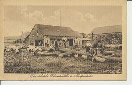 AK Sägemühle In Nordfrankreich - Guerra 1914-18