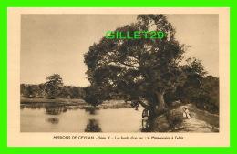 MISSIONS DE CEYLAN - SÉRIE X - LES BORDS D'UN LAC, MISSIONNAIRE À L'AFFÛT - MISSIONNAIRES OBLATS  DE MARIE-IMMACULÉE - - Missions