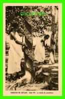 MISSIONS DE CEYLAN - SÉRIE VIII -LA RÉCOLTE DE CAOUTCHOUC - MISSIONNAIRES OBLATS  DE MARIE-IMMACULÉE - - Missions