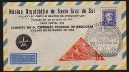 18875 Brasil Envelope Núcleo Orquidófilo Orquídeas 1955 - Brasilien
