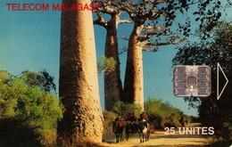 TARJETA TELEFONICA DE MADAGASCAR. (430) - Madagascar