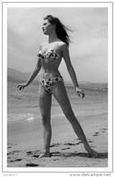 Sexy BRIGITTE BARDOT Actress PIN UP Postcard - Publisher RWP 2003 (115) - Artiesten