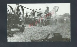 AGRICULTURE PHOTO TYPE CARTE PHOTO 14,5X9 PERSONNAGES MACHINES AGRICOLE À ANGRIE 49 : - Professions