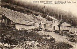CPA -GRAND BALLON (68) -Aspect De La Ferme-Auberge Freundstein De Emile Syren En  1927 - Autres Communes