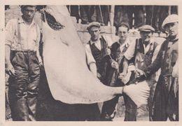 AB / CPSM 10X15 ST PIERRE ET MIQUELON Pêcheurs De Morue (Pub La Biomarine )+ 2 Timbres 2 F Rouge & 50 C Bleu Vert(1948) - Saint-Pierre-et-Miquelon