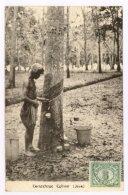 JAVA : Caoutchouc Cultuur, 1931 (z4244) - Indonesia