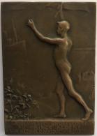 Médaille Bronze. Congo Belge. Le Jeunesse Bruxelloise Au Prince Albert A Son Retour D'Afrique 1909.  P. Wissaert. - Royaux / De Noblesse