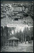 Saalquelle, Fichtelgebirge, Saale Ursprung, Hof, Hofkunstanstalt Löffler & Co.,  MBK (2), Oberfranken - Hof