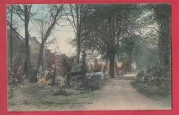 La Louvière - Château Boch, Ruines Dans Le Parc ... Jolie Vue Couleur - 1908 ( Voir Verso ) - La Louvière