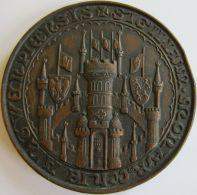 M05283  WIJK OUD ANTWERPEN - 1894   (200g) Chateau... Au Revers - Professionnels / De Société