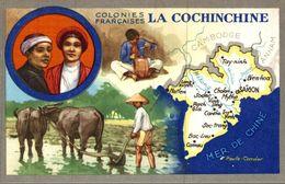 LION NOIR COLONIES FRANCAISES LA COCHINCHINE - Cromos
