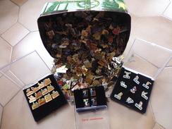 Lot De 500 Pin's Environ  Sans Les Attaches - Badges