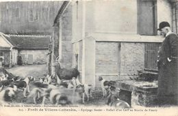 Forêt De VILLERS-COTTERETS - Equipage Menier - Hallali D'un Cerf Au Moulin De Fleury - Chasse à Courre - Villers Cotterets