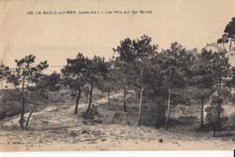 44 La Baule Sur Mer  Les Pins Sur Les Dunes - La Baule-Escoublac